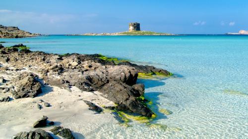 Dettaglio Spiaggia la Pelosa: roccia, mare e Torretta